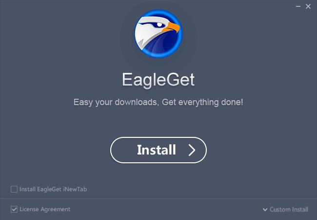 EagleGet安装