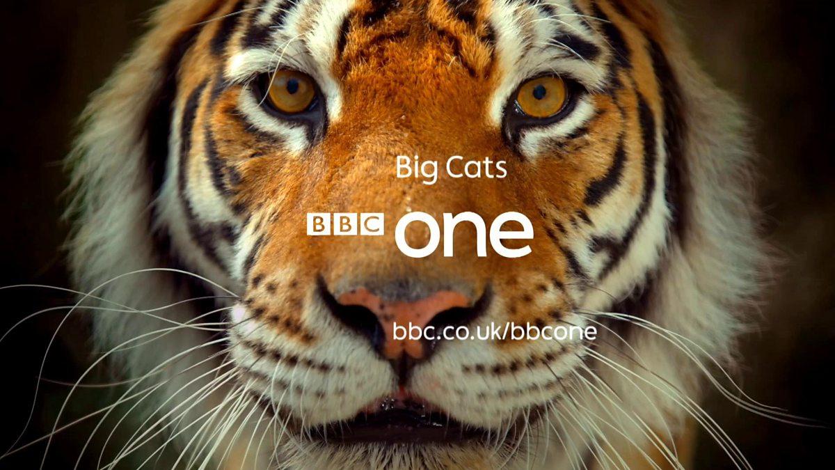 BBC-大猫(第1集)/720P高清/英语内嵌中字/百度&微云&BT