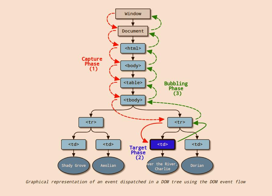 W3C的模型