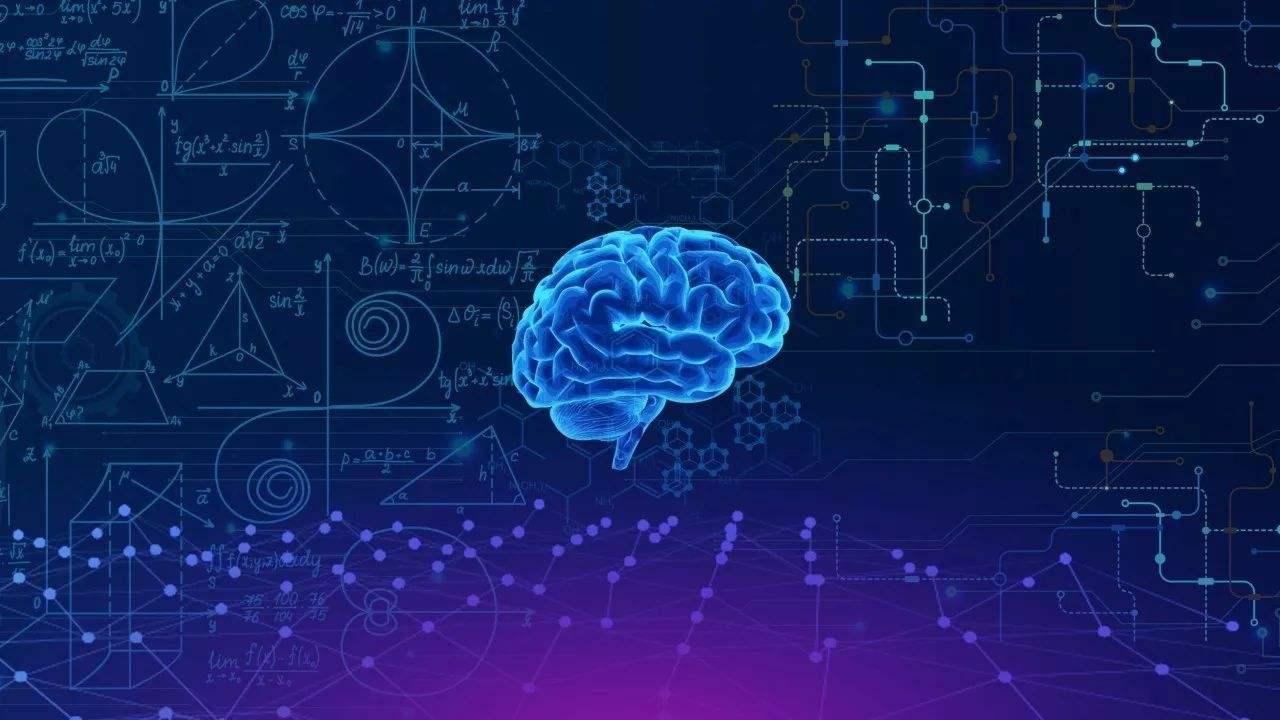 什么是认知体系?什么是知识体系?
