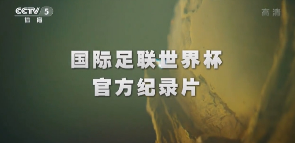 《历届世界杯官方纪录片》15集全  百度云盘高清下载 综合记录