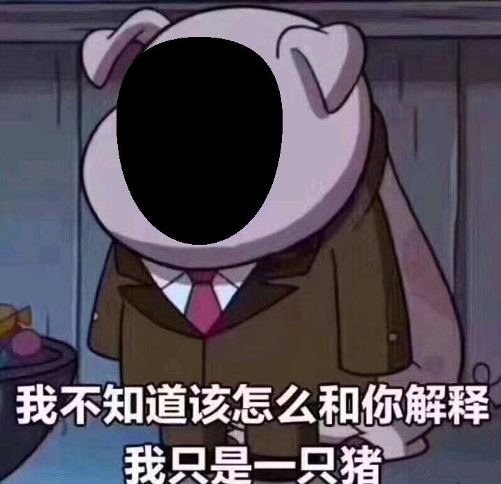 我只是一只猪,不知道怎么跟你解释