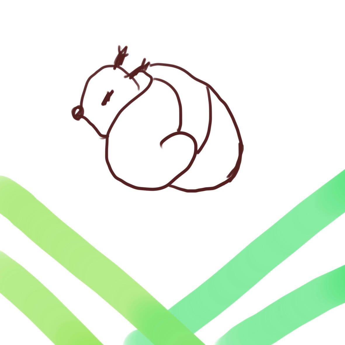 松鼠的大尾巴