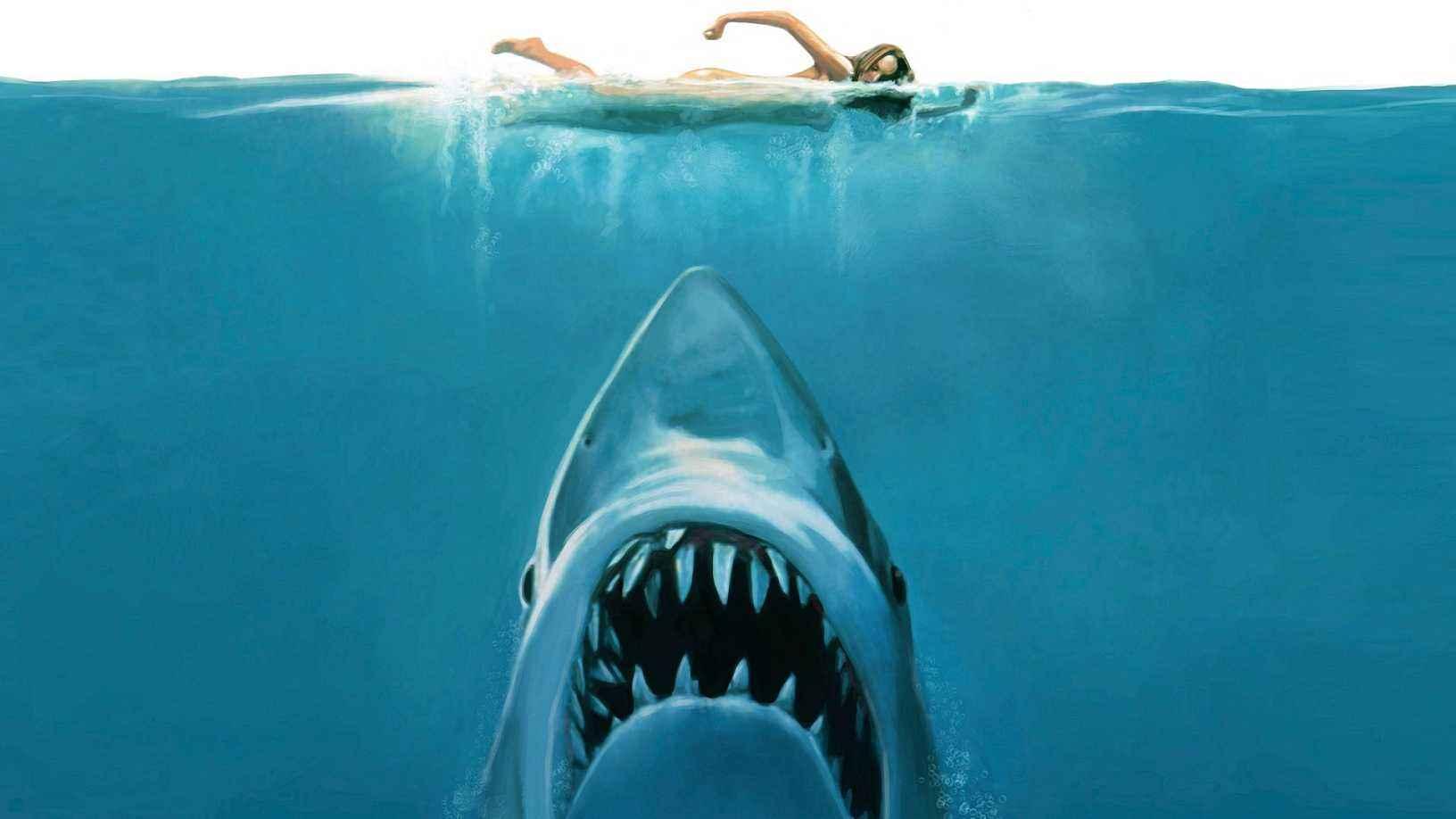 鲨鱼海洋电影_《巨齿鲨》打败《大白鲨》获鲨鱼电影全球最高票房记录,郭达 ...