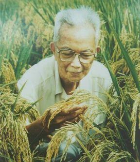 huangyaoxiang