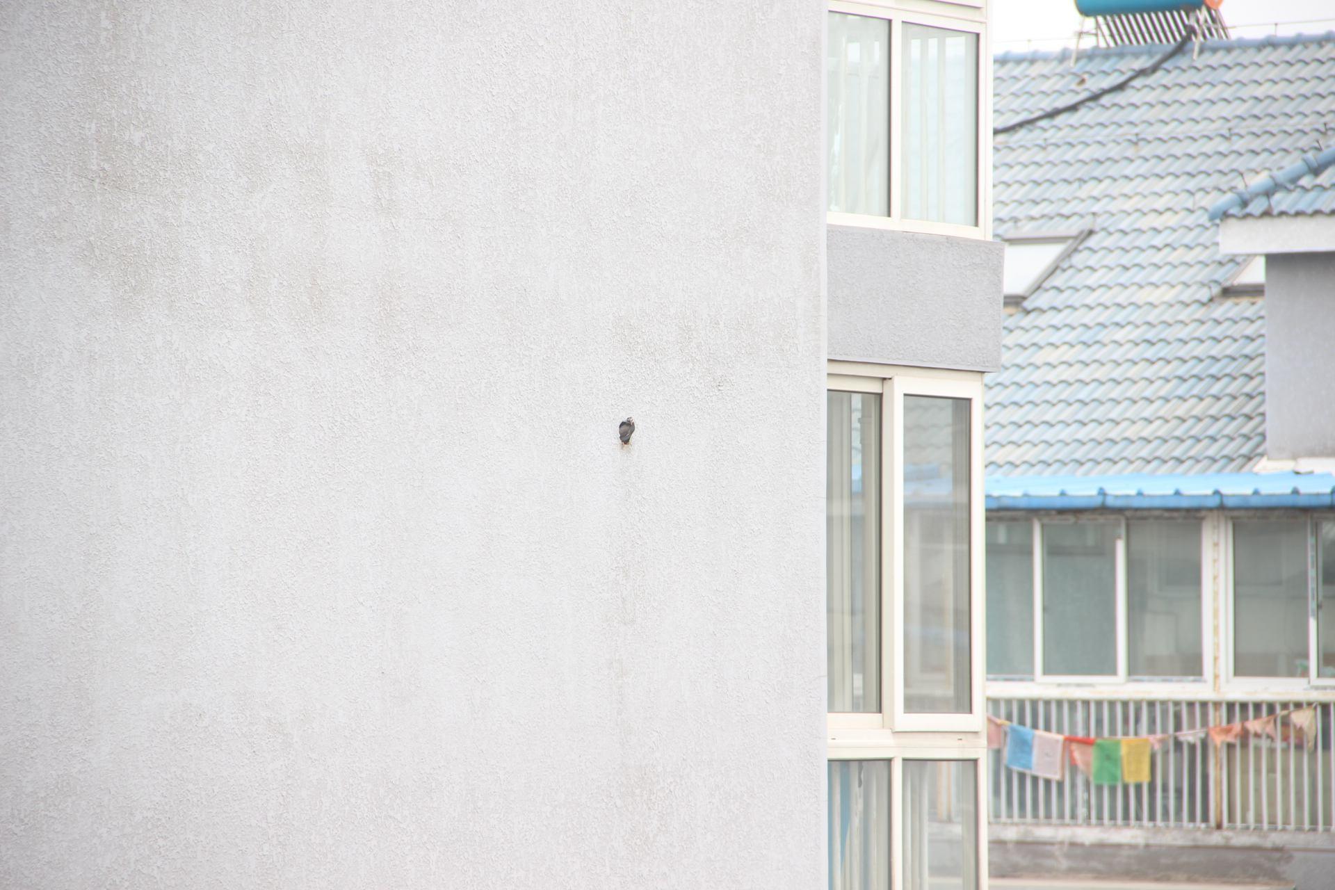 图a-24 我在阳台上拍的,这个洞应该是用来穿空调外机的管道的