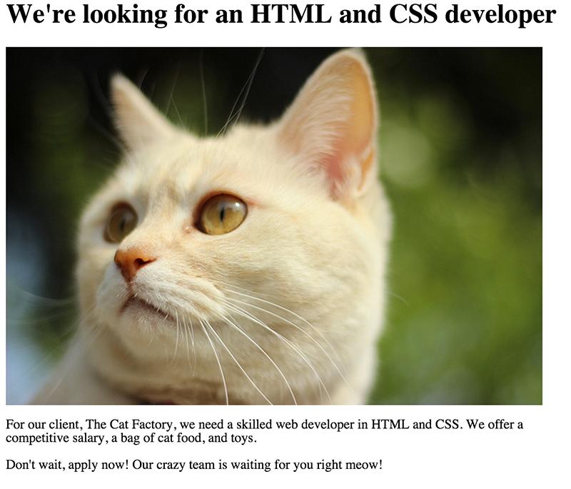 job-post-html-browser.png