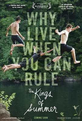 夏日之王 The Kings of Summer_海报