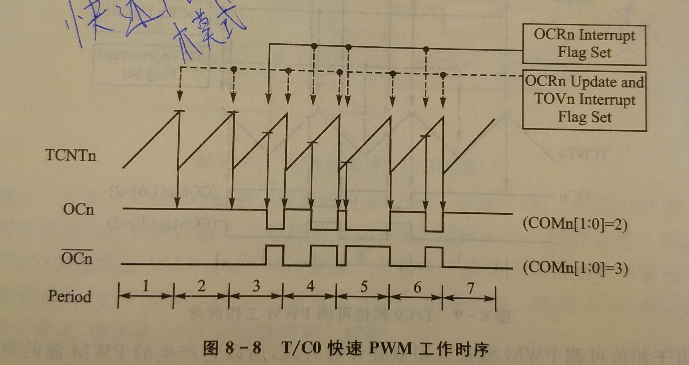 P81203-164243(1).jpg