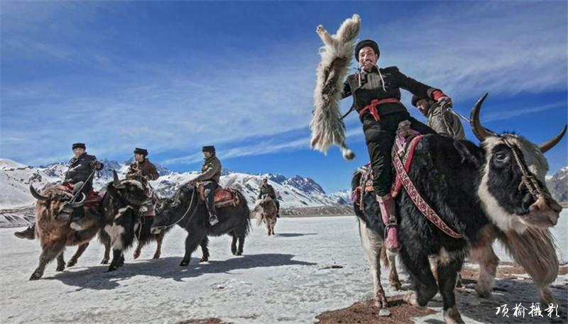 肖贡巴哈尔-叼羊 (7).jpg