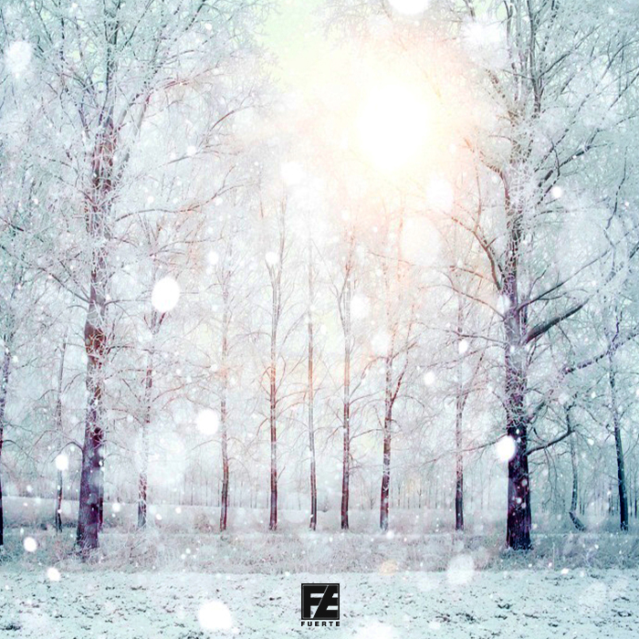 Fuerte - Christmas MashUp Pack 2018