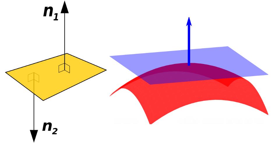 法线。图片来自wiki