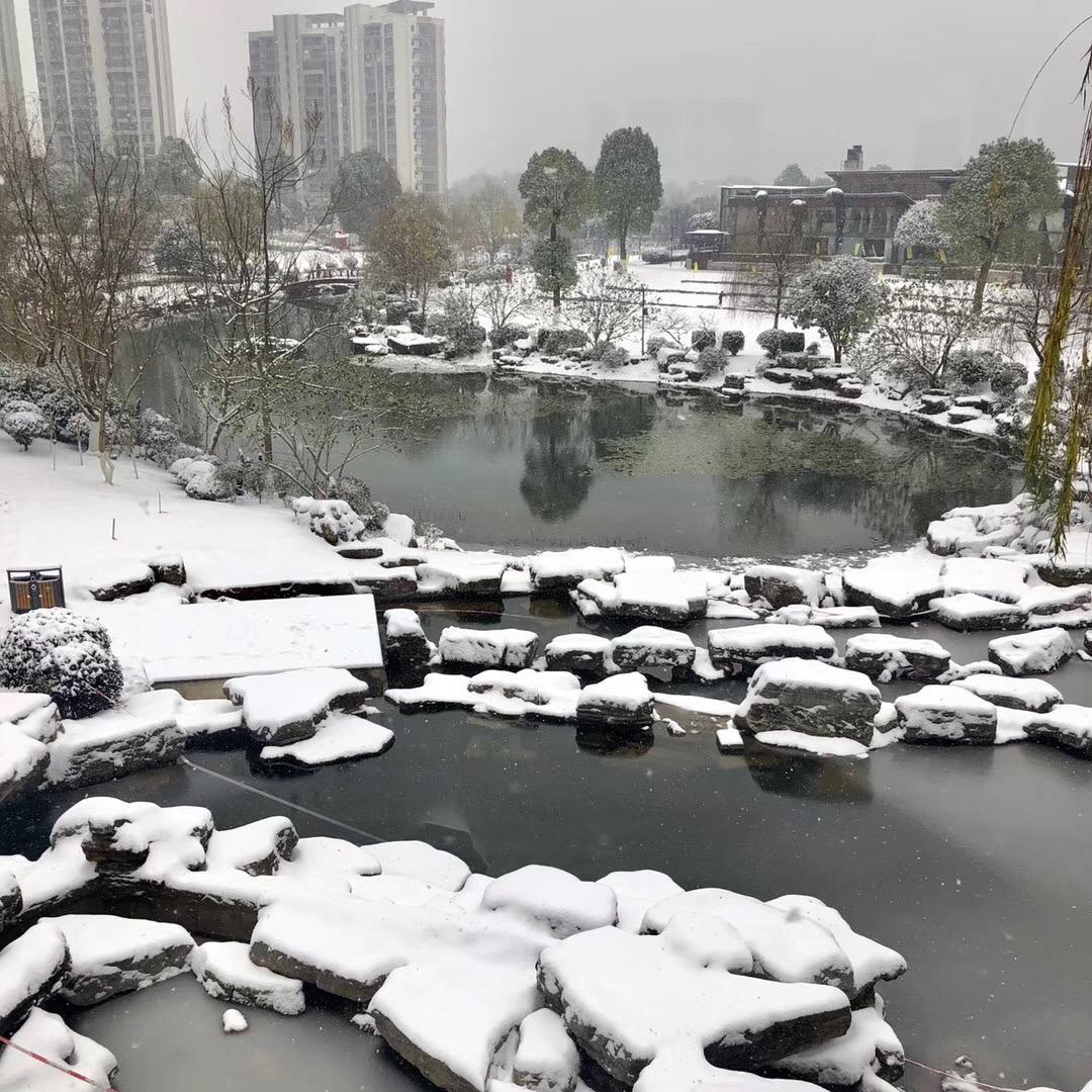 雪 随笔 第3张