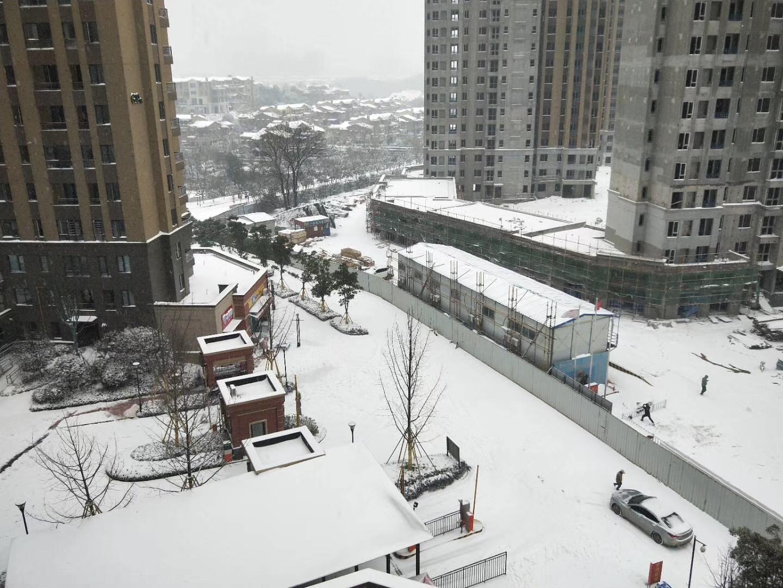 雪 随笔 第5张