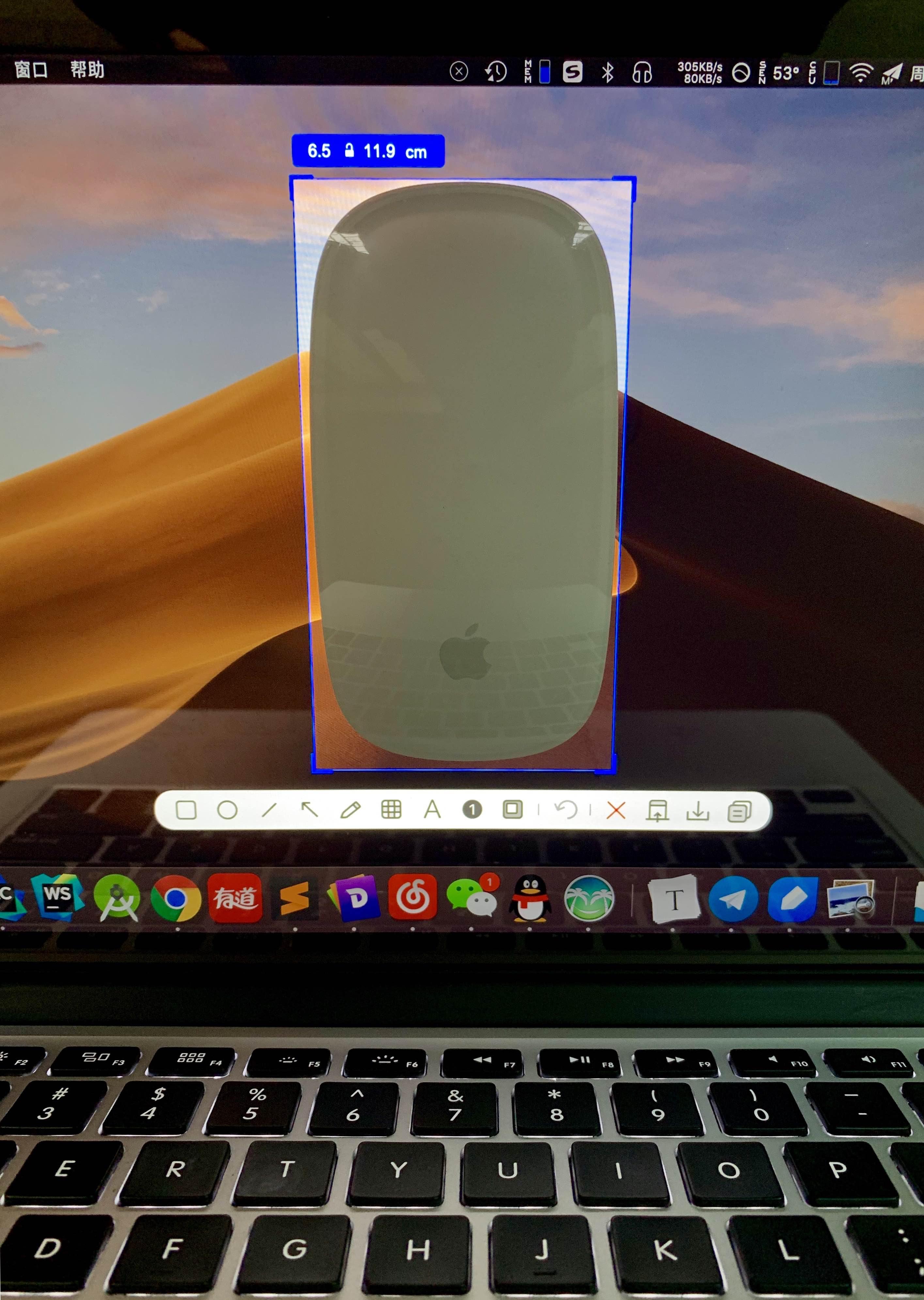 Xnip 量 Magic Mouse.jpg