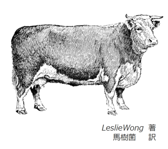 4.cow.jpg