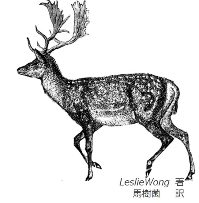 6.deer.jpg