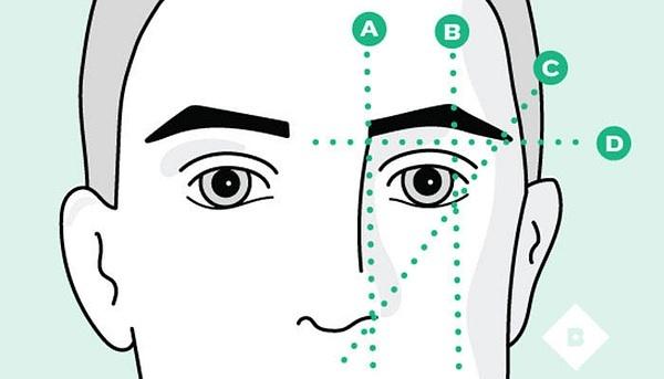 眉毛的解构