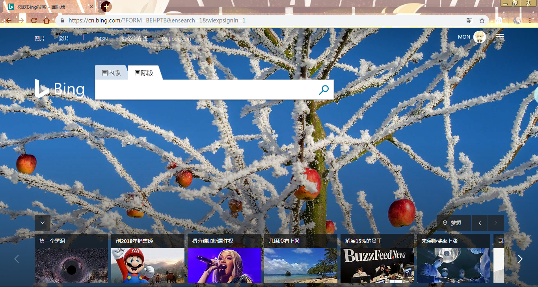 必应Bing DNS污染解决方法插图