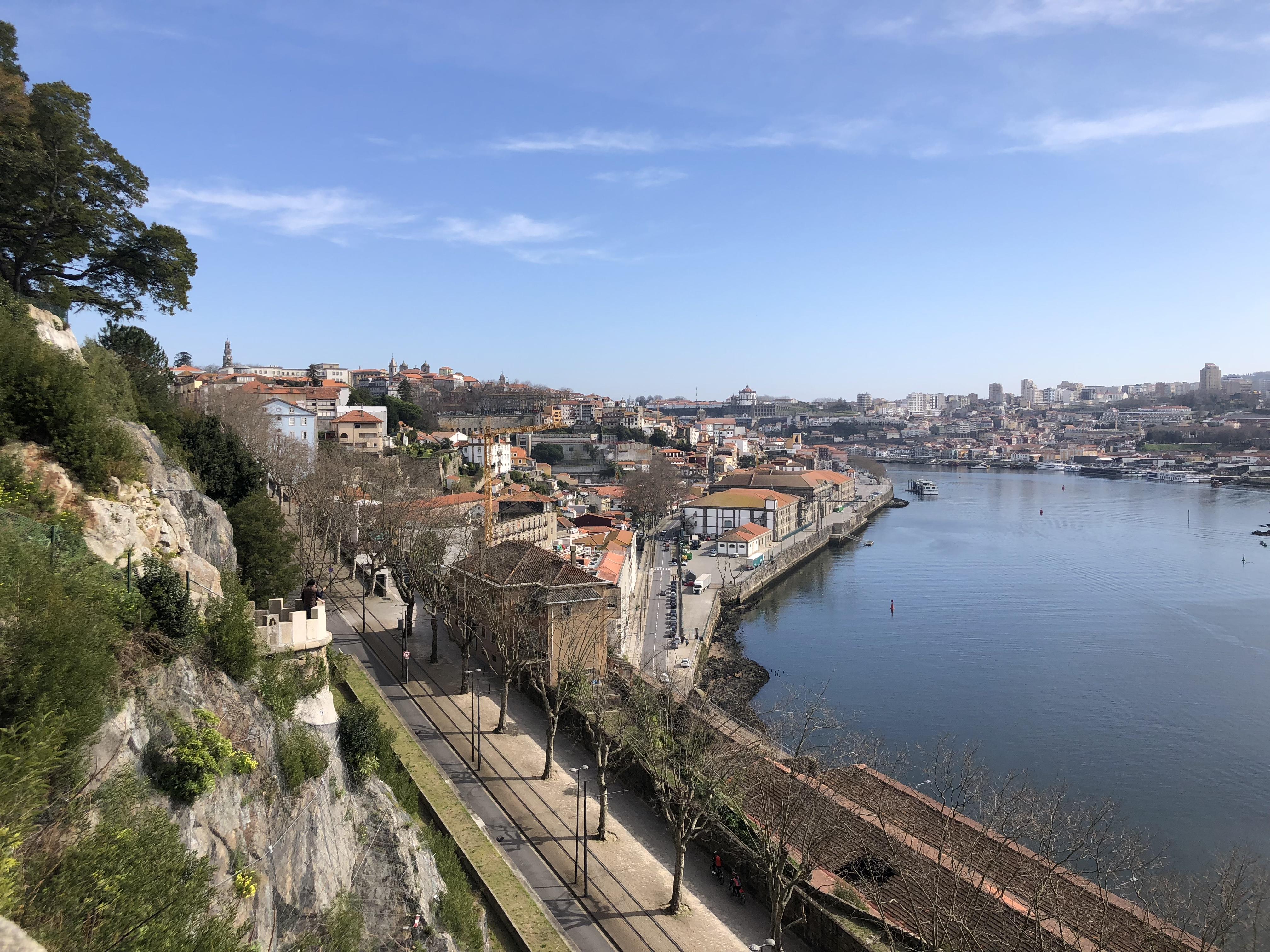 View from Jardim da Cordoaria