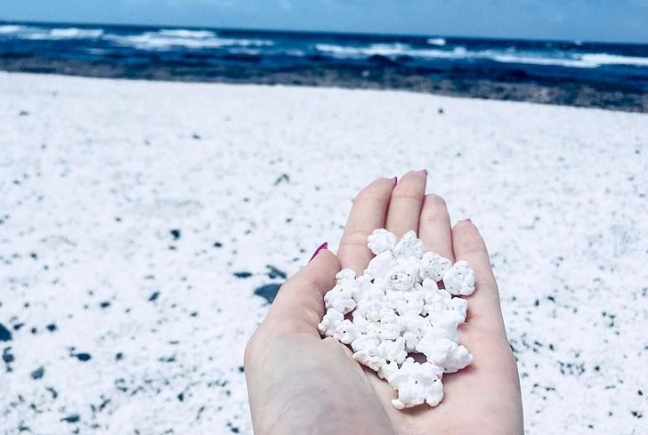 """一条美丽的海岸线,铺满了数百万颗""""爆米花""""-1"""