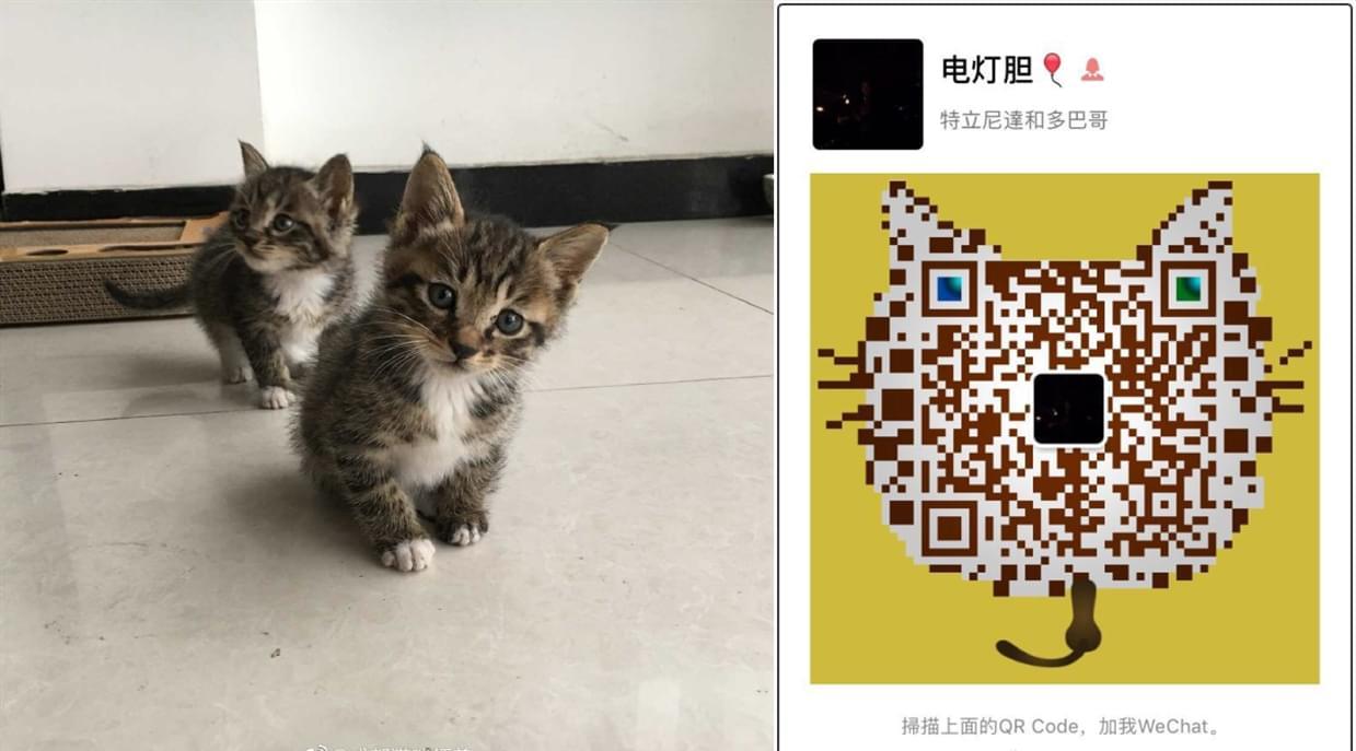 无偿领养5.3 (2).jpg