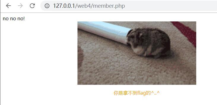 web4_nonono.jpg
