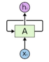 RNN-Single-Cell.jpg