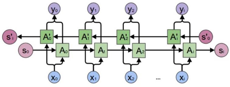 BRNN-Single-Cell-Expand.jpg