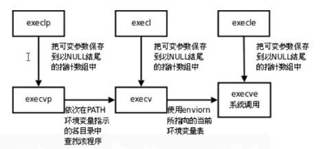exec函数族,图片来源于网络