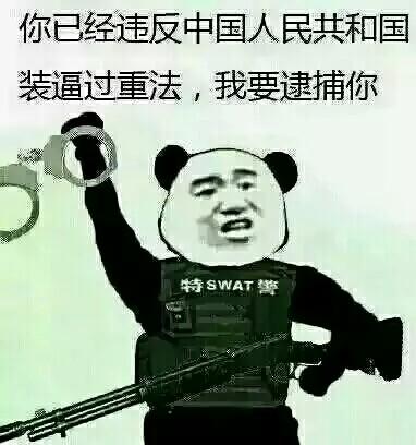 你已违反中华人民共和国装逼过重法,我要逮捕你