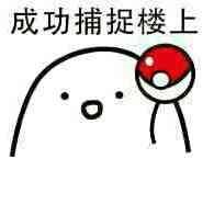 bird_pokemon_get