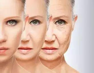 老不老,自己决定!哈佛大学心理学教授:衰老是一个被灌输的概念