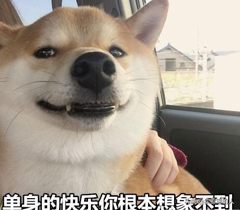 你敢相信吗?中国成年人口已经超过2亿人凭本事单身