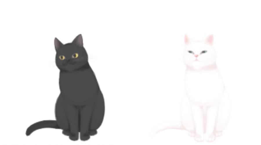 cat.png