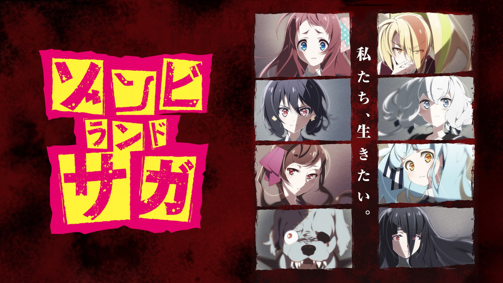 Zombieland Saga BD Episode 1-12 Subtitle Indonesia (Batch)