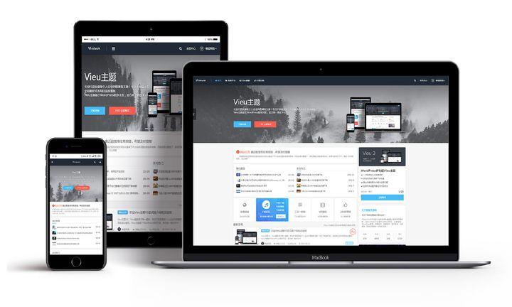 WordPress主题 轻量级个人企业风格博客主题 Vieu v4.0.1破解无授权无限制版 内置完整商业模式-资源客