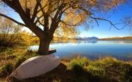 如平静的湖面,如死水激不起一点波澜,那么生活会是怎样的黯然啊