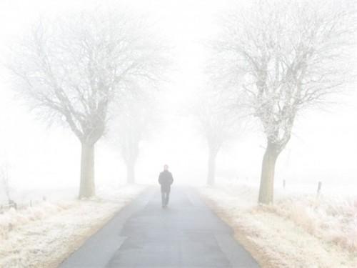 不是一下子成了陌生人,而是走向陌生的感觉