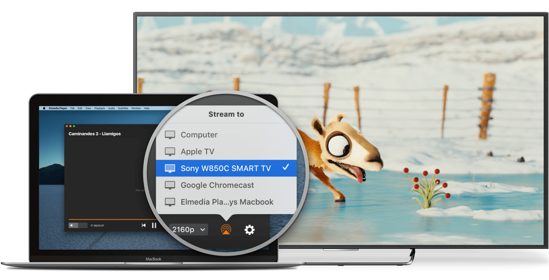 Elmedia Video Player Pro for mac下载