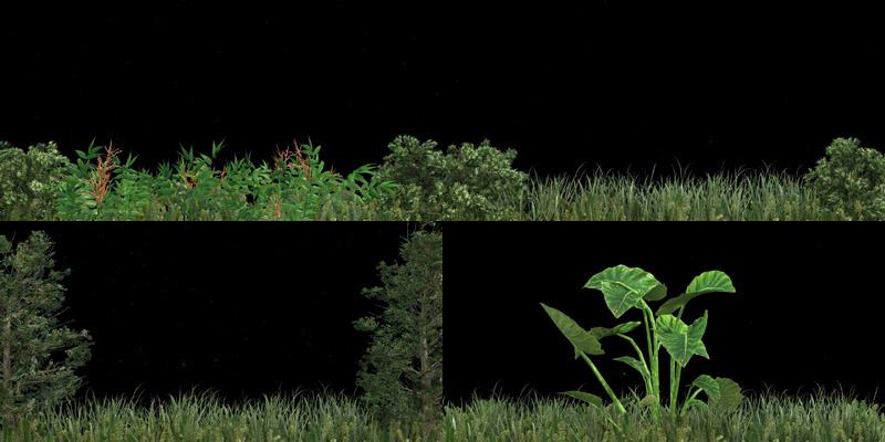 青草地树木绿植视频素材[5款]