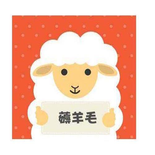 撸羊毛安卓版