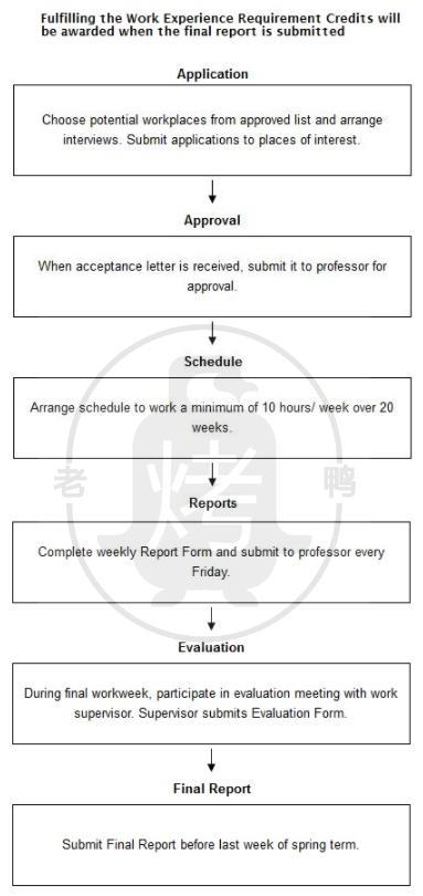 大学生实习-雅思写作流程图flow chart-雅思小作文范文 work experience requirement