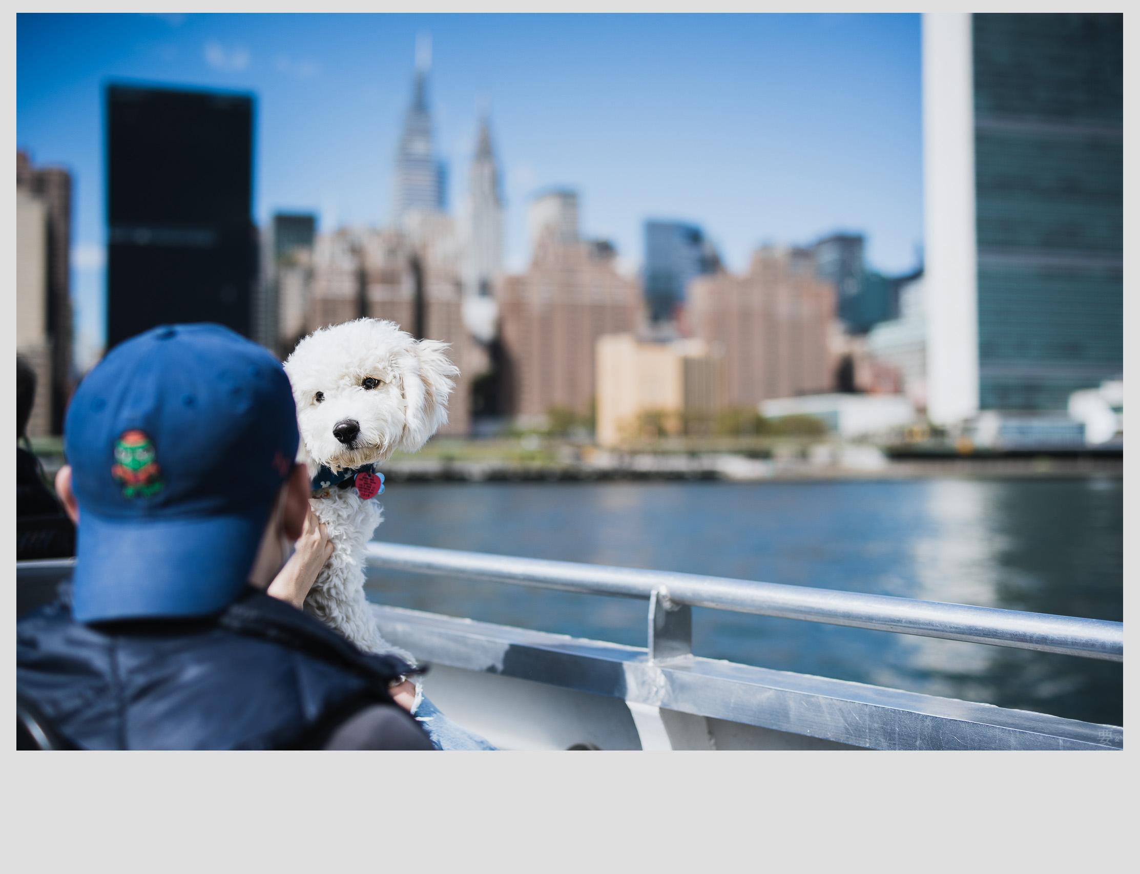 福伦达 Nokton 40mm f1.2 索尼e口手动镜头 - 长期使用报告