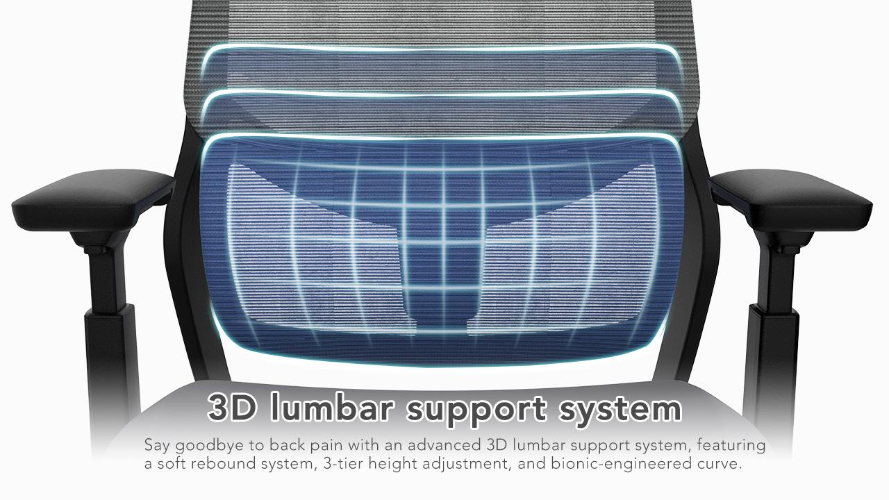 3D lumbar support