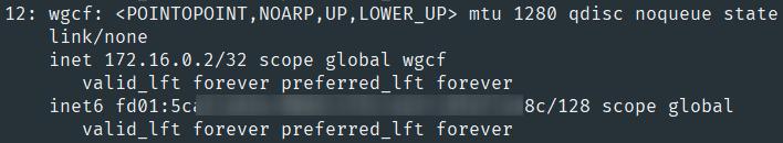 名为wgcf的网络接口