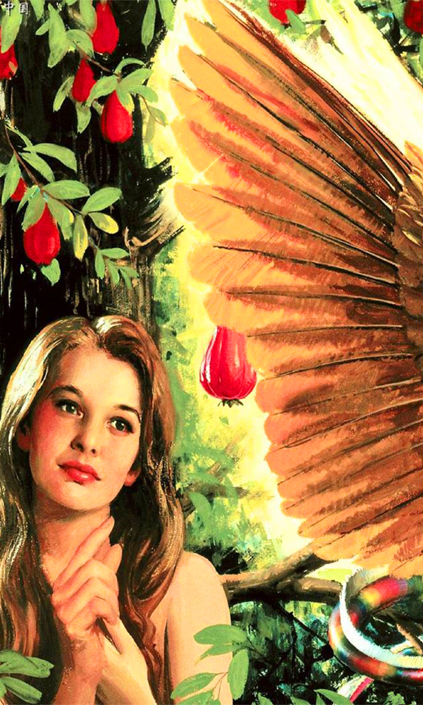 《夏娃》封面图片
