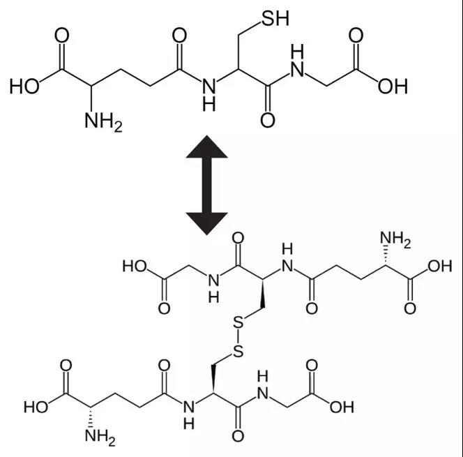 Glutathione Molecular structure diagram